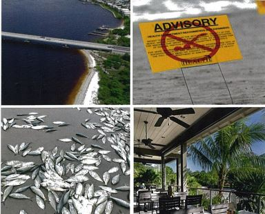 Florida Economic Council making Florida's waterways usable again.