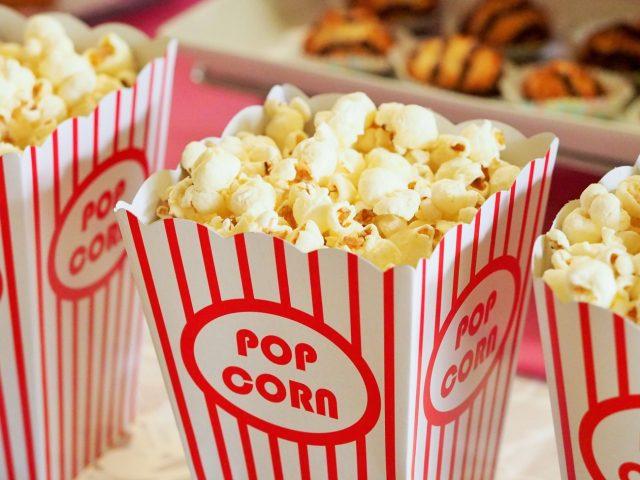 movies at ding darling