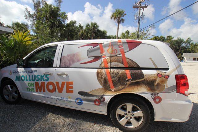 shell fair van