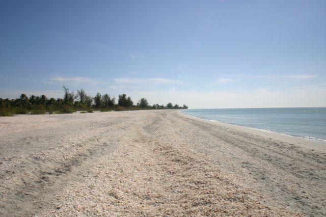 beach at Sanibel Island