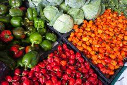 pepper display